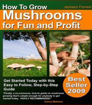 How Mushrooms Are Grown