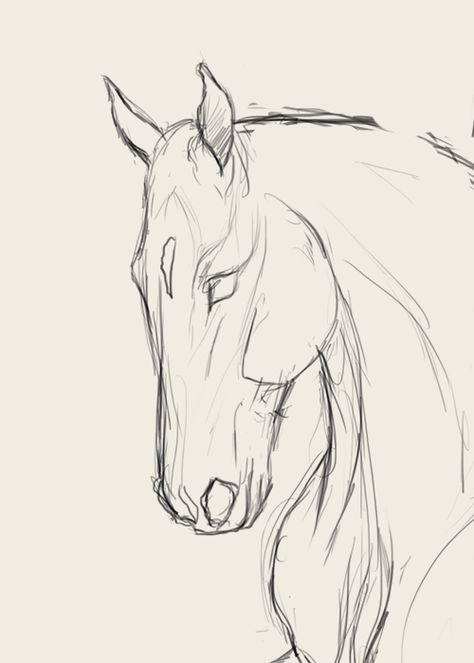 Tiere Malen Learn to Draw Step By Step: Animal Horse Head (Side View) Art Sketches Animal art sketches draw Hör Horse Learn malen Side Step Tiere View Horse Drawings, Cool Art Drawings, Pencil Art Drawings, Art Drawings Sketches, Horse Face Drawing, Drawing Ideas, Sketch Drawing, Drawing Art, Drawing Tips