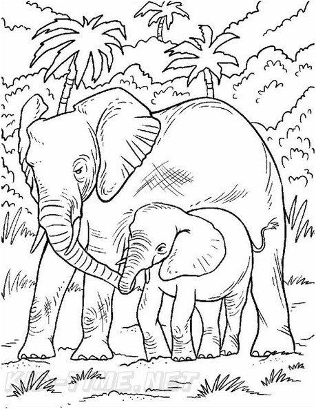 Elephant Coloring Pages Printable Realistic Elephant Coloring Book Page Elephant Coloring Page Halloween Coloring Pages Printable Coloring Pages