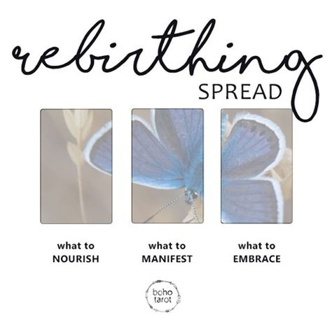 """Boho Tarot on Instagram: """"Rebirthing Spread 1. what to nourish 2. what to manifest 3. what to embrace #bohotarotspread #tarotspread #oraclespread"""""""