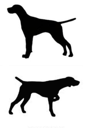 Pointer English Or German Shorthair Dog Canine Profile Etsy In 2020 Dog Silhouette Pointer Puppies German Shorthaired Pointer Dog