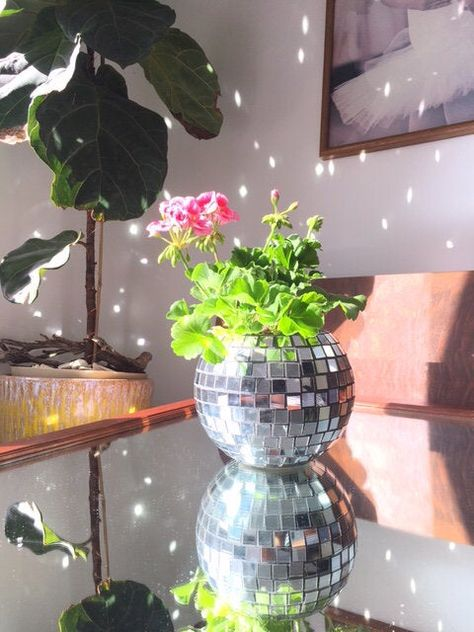 Bring any room to life with this disco ball flower pot! Once the light hits, it's magic hour with sparkles for days! Tiles are mirror, not plastic.