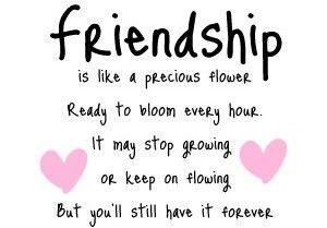 Tumblr Spruche Kurz In 2020 Lustige Freundschaftszitate Gute Freundschaft Zitate Zitate Zum Thema Freundschaft