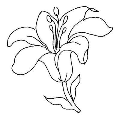 Imagenes De Flores Naturales Dibujos De Flores Flores Faciles De Dibujar Dibujos Flores Para Colorear