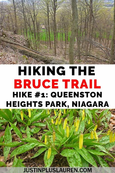Do you have any hiking goals? Here's a big one: hiking the Bruce Trail, all 900km of it! It's a hiking trail in southern Ontario from Niagara to Tobermory. Here's hike #1 of my journey!   #BruceTrail #Niagara #NiagaraFalls #Ontario #Canada #Hiking  Hiking Trips in Ontario | Ontario Hiking | Canada Hiking | Hiking Trips in Canada | Canada Trails | Canada Hiking Trails