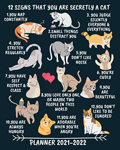 Cat Calendar 2022.Planner 2021 2022 12 Signs That You Are Secretly A Cat 2 Year Monthly Calendar Organizer 24 Months January 20 Kindle Reading Book Club Books Amazon Book Store