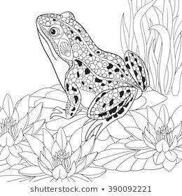 Stockfoto Und Stockbild Portfolio Von Big Boy Shutterstock Malvorlagen Tiere Tiere Malen Mandala Tiere