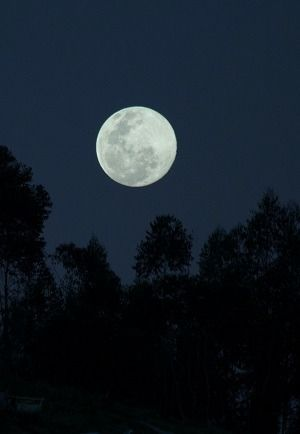 FULL MOON WALK On this walk, explore the magical feeling of viewing a full moon combined with exploring our senses from dusk into the darker hours of nightfall.