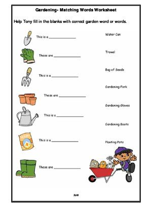 Worksheet Of Plants Getting To Know Plants Plants And Living Organisms Science In 2021 Kids Gardening Tools Gardening For Kids Garden Tools