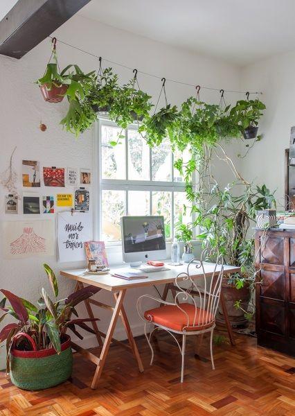 Plantas Dentro De Casa Decoracao Interiores De Casas Decoracao Personalizada