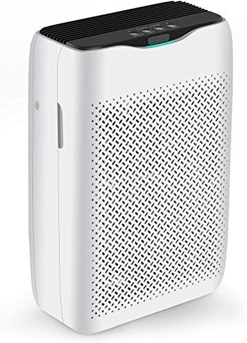 Enjoy Exclusive For Coocheer Air Purifier True Hepa Filter Activated Carbon Large Room Smart Air Cleaner Deodorizer Removing Odors Dust Smoke More Suitable Home Rooms Office Online In 2020