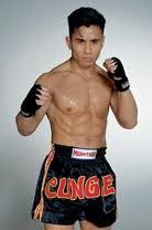 Cung Le UFC fighter, specialty, Sanda - Sanshou