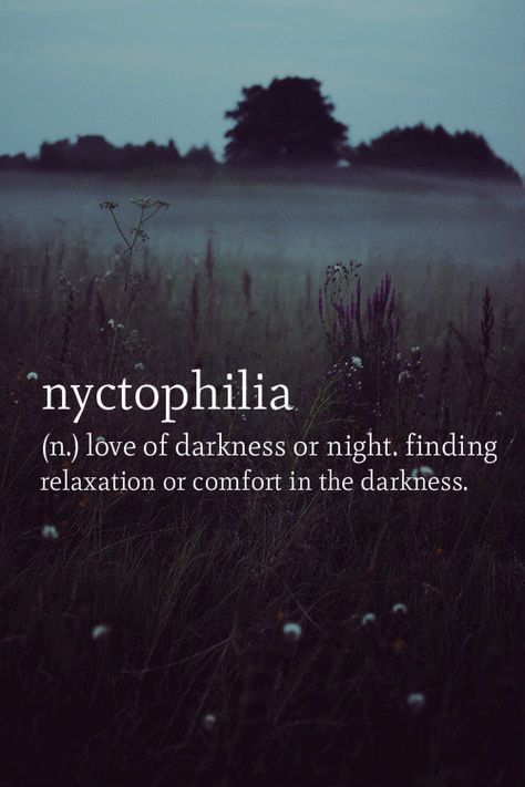 (n.) love of darkness or night. finding relaxation or comfort In the darkness