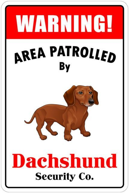Aluminum Warning Area Patrolled By Dachshund 8 X12 Metal