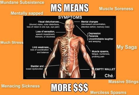 MS Means...
