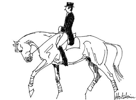 FEI Publishes Diagrams for Dressage Warm-ups for Stewards