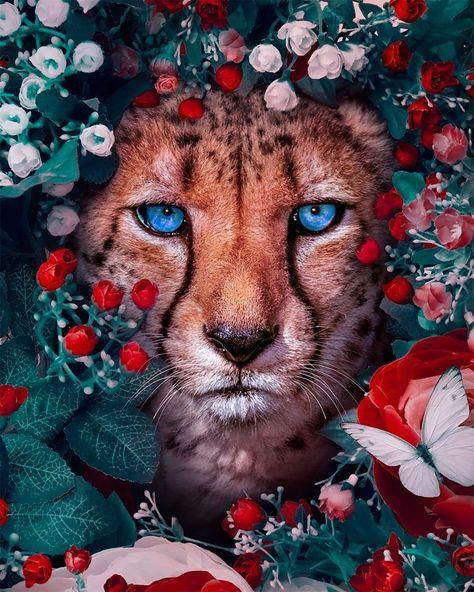 Andreas Animallindos Haeggkvist Inspirationsgitter Surreale