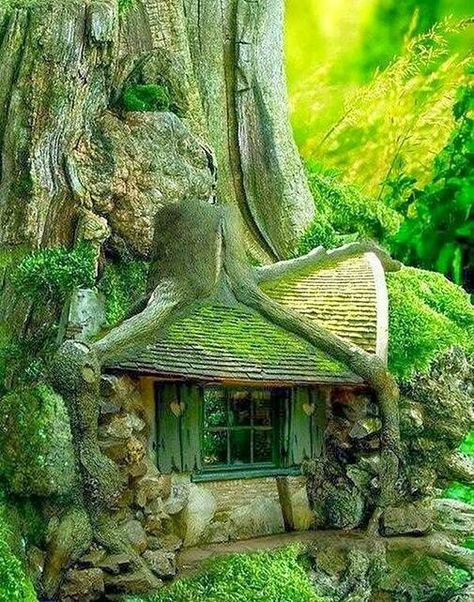 Tree House in the Forrest.fairy house Could you imagine stumbling onto this in the forest? Architecture Organique, Unusual Homes, Forest House, Forest Cottage, Storybook Cottage, Forest Village, Forest Cabin, Fairytale Cottage, Cottage House