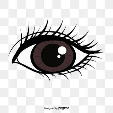 Eye Eyes Clipart Black And White Eyeball Png Transparent Clipart Image And Psd File For Free Download Cartoon Eyes Sketch Background Eye Illustration