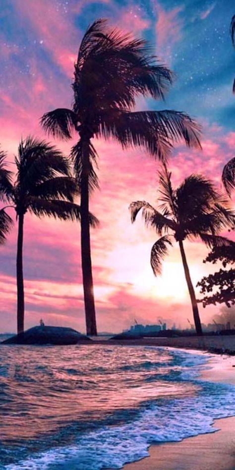 Pic of the Day...Tropical Admiration 💜💙 ------------ #beach #sunset #sunsets #sundown #tropics #beach #paradise #travel