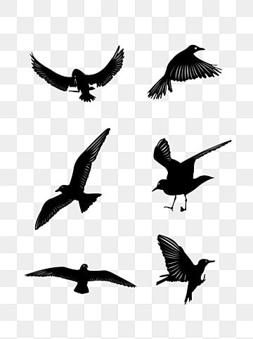46 Free Vector Flying Birds Silhouettes Flying Flying Bird Bird Png Transparent Image And Clipart For Free Download Flying Bird Silhouette Bird Silhouette Bird Graphic
