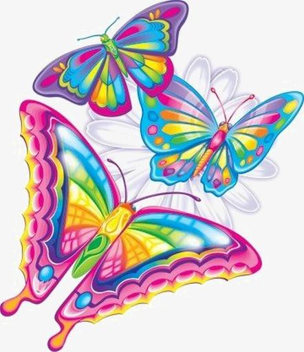 Colorful Butterfly Butterfly Art Lisa Frank Colorful Butterflies
