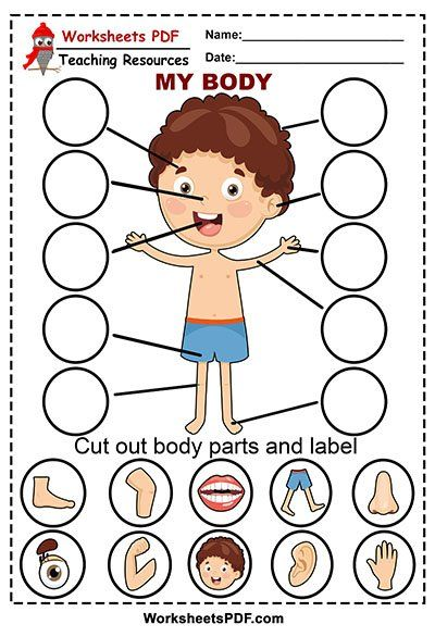 Body Parts Preschool Activities, Preschool Body Theme, Senses Preschool, Preschool Writing, Preschool Lesson Plans, English Activities, Preschool Learning Activities, Preschool Worksheets, Preschool Crafts
