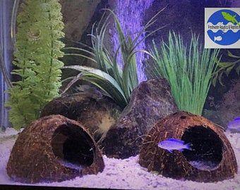 Pleco cave cichlid cave pet house ceramics and pottery Fish Hide Aquarium decoration Aquarium Cave pet supplies Betta fish tank