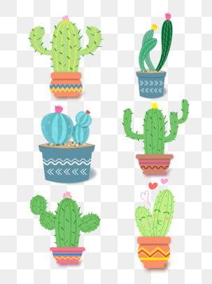 Cartoon Cute Cactus Group Illustration Cactus Cartoon Cartoon Cactus Png And Vector With Transparent Background For Free Download Cactus Cartoon Cartoon Template Cartoon Clip Art