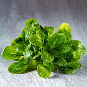 Feldsalat ist ein typischer Wintersalat und hat zarte Blätter mit mild-nussigem Geschmack. Von allen Salatsorten steckt in Feldsalat der höchste Gehalt an Vitaminen und Mineralstoffen.