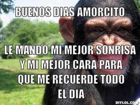 Memes Buenos Dias Amor 10 Buenos Dias Amor Memes De Buenos Dias Se Bueno