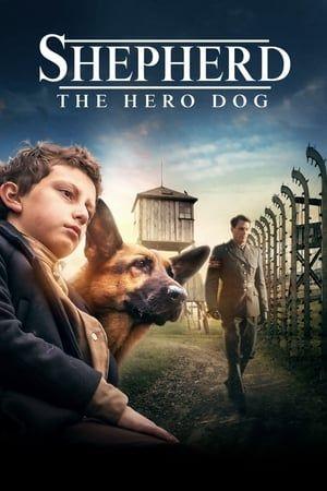 Shepherd The Hero Dog 2020 In Full Hd Dog Movies Dogs Online Hero