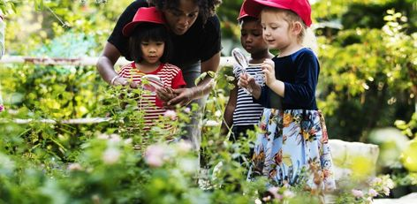 Preschool Nature Education Tips for Teachers to Get Kids