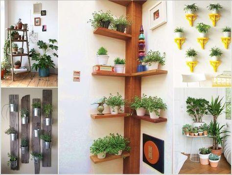 Piante Da Interno Originali.Angolo Verde In Casa Le Idee Piu Originali Foto Arredare Con