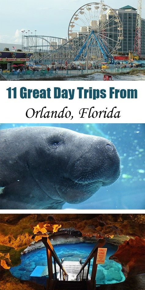 11 Great Day Trips from Orlando Florida. Whether youre passing through Florida on a road trip or are looking for a break from the amusement parks in Orlando youll find lots of great adventures just an hour or two outside of this city. Orlando Parks, Orlando Travel, Orlando Vacation, Florida Vacation, Florida Travel, Florida Beaches, Travel Usa, Travel Tips, Clearwater Florida