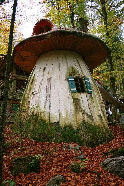 Habitats alternatifs, cabanes et huttes - Page 5 Ac9332e28a8aca4cbd09498620f13a7b