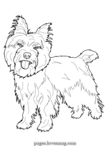 Coloring Web Page Of Cairn Terrier Tiere Zeichnen Ausmalbilder Zauberer Von Oz