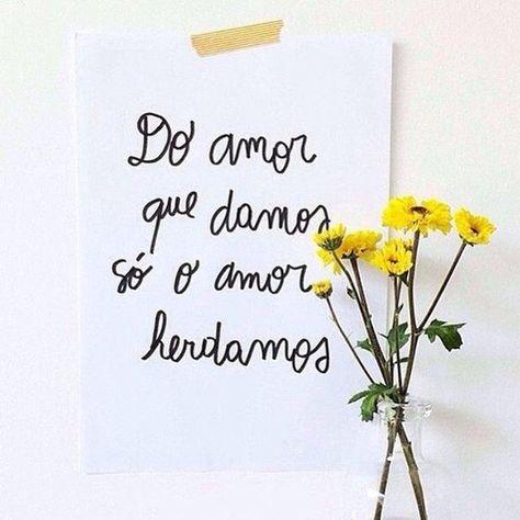 🌼 amor gera amor 🌼