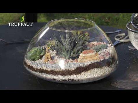 Diy Deco Terrarium De Cactus Et Plantes Grasses Jardinerie