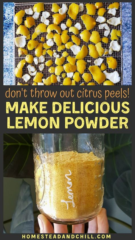 Got lemons? Don't waste the peels! Instead, turn them into a delicious, zesty, sweet dried lemon powder. Lemon powder is easy to make, and can be used in more ways than you'd imagine! Homemade Spices, Homemade Seasonings, Homemade Tea, Lemon Recipes, Healthy Recipes, Iced Tea Recipes, Eat Healthy, Healthy Life, Dried Lemon