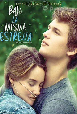 Ver Bajo La Misma Estrella 2014 Online Latino Hd Pelisplus Peliculas De Romance Bajo La Misma Estrella Ver Peliculas