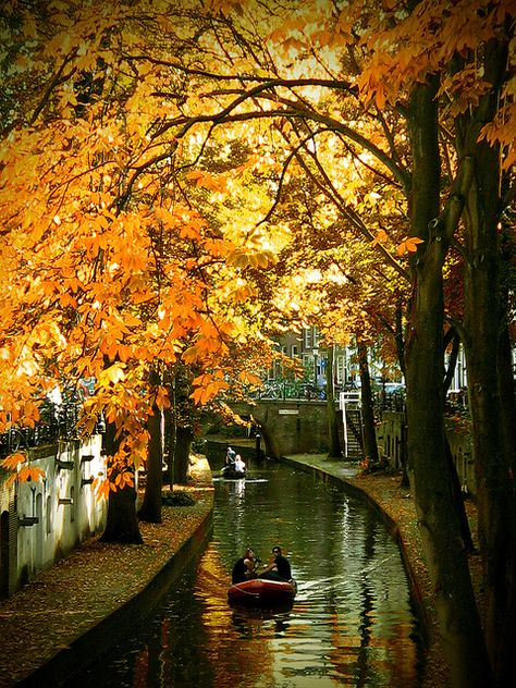 Lets go to the Netherlands