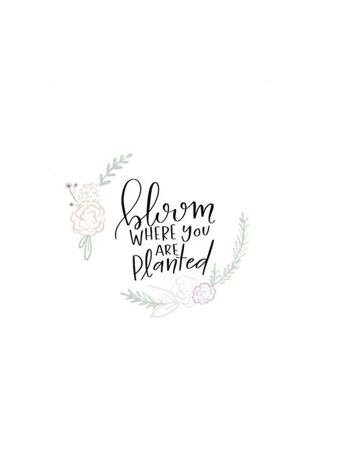Bloom where you are planted.  #gardenquotes