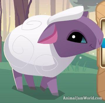 Animal Jam Sheep Codes, Pictures & Video - Animal Jam World