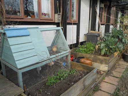 garden bed vegetable chicken tractor - Google Search