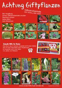Giftige Pflanzen Fur Kinder Giftige Pflanzen Pflanzen Giftpflanzen
