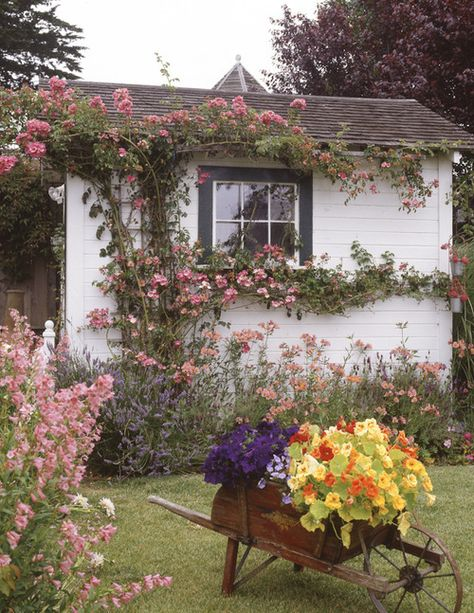 cottage climbing roses make such a huge impact, along with that container planting. Not a large cottage garden--but loaded with charm! A cottage garden can be small but very charming, like this one with climbing flowers and a wheelbarrow planter.