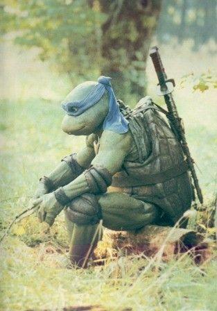 Teenage Mutant Ninja Turtles 1990 Hd Wallpaper From Gallsource Com Teenage Mutant Ninja Turtles Ninja Ninja Turtles