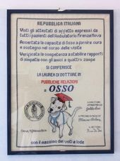 Per Capire La Grandezza Di Osso Bisogna Recarsi All Ambu With Images Pet Supplies Book Cover Vets