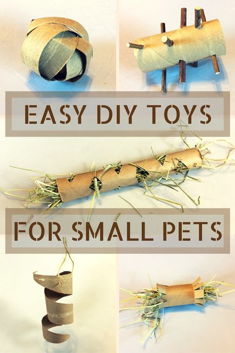 Cheap and easy DIY toys for small pets. Just use the toilet paper and paper towel rolls you're already throwing out to make affordable toys for chinchillas, rabbits, guinea pigs, rats, and other small pets. toys DIY Toilet Paper Roll Toys for Small Pets Diy Pour Lapin, Diy Bunny Toys, Diy Toys For Hamsters, Diy Toys For Rabbits, Diy Rat Toys, Diy Degu Toys, Diy Rodent Toys, Diy Hedgehog Toys, Diy Parrot Toys